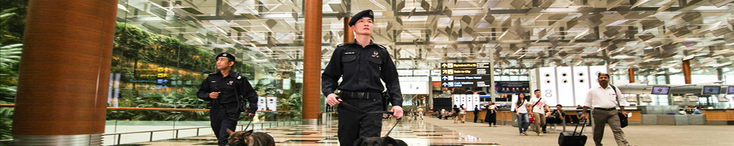 Photo of airport police officers with sniffer dogs